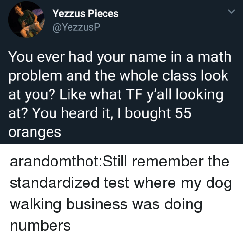 Target, Tumblr, and Blog: Yezzus Pieces  CYezzusP  You ever had your name in a math  problem and the whole class look  at you? Like what TF y'all looking  at? You heard it, I bought 55  oranges arandomthot:Still remember the standardized test where my dog walking business was doing numbers