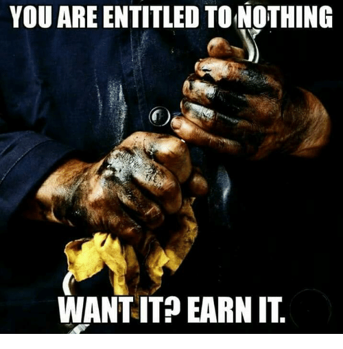 Memes, Entitled, and 🤖: YOU ARE ENTITLED TONOTHING  WANT IT?EARN IT
