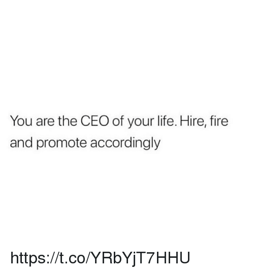 accordingly: You are the CEO of your life. Hire, fire  and promote accordingly https://t.co/YRbYjT7HHU
