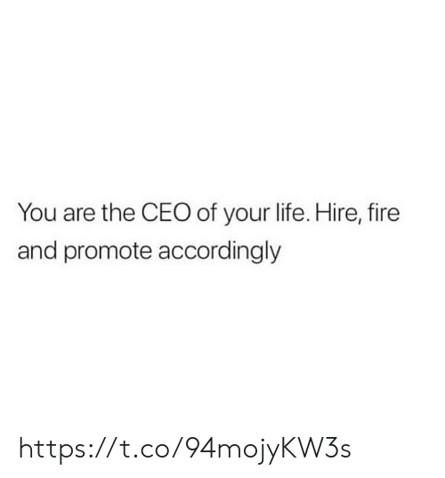 Fire, Life, and Memes: You are the CEO of your life. Hire, fire  and promote accordingly https://t.co/94mojyKW3s