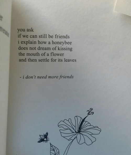 we can still be friends: you ask  if we can still be friends  i explain how a honeybee  does not dream of kissing  the mouth of a flower  and then settle for its leaves  i don't need more friends