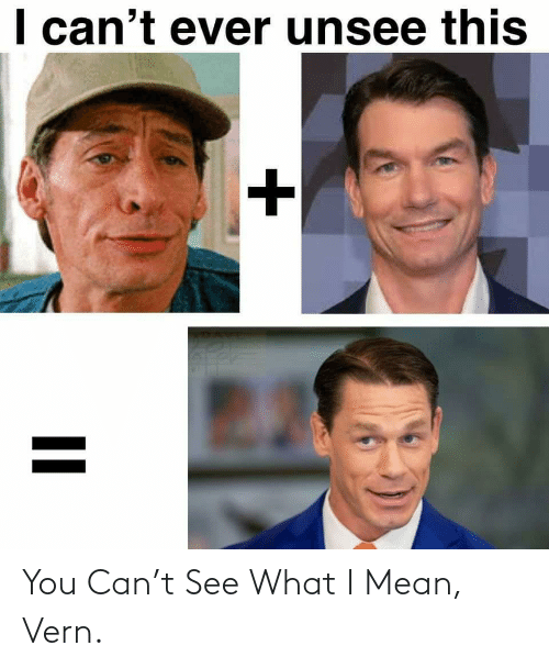 What I: You Can't See What I Mean, Vern.