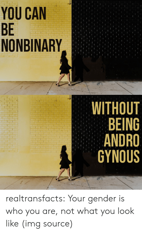 Target, Tumblr, and Blog: YOU CAN  BE  NONBINARY   WITHOUT  BEING  ANDRO  GYNOUS realtransfacts: Your gender is who you are, not what you look like   (img source)