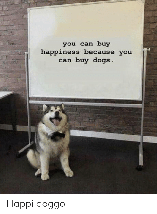 Dogs, Happiness, and Doggo: you can buy  happiness because you  can buy dogs Happi doggo