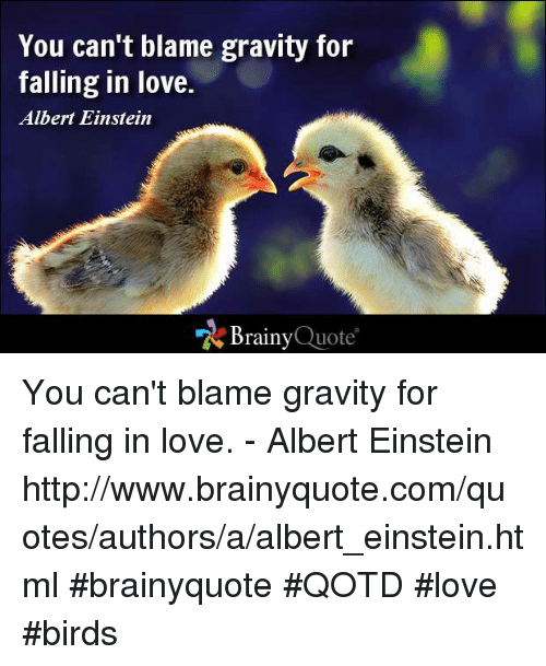 love birds: You can't blame gravity for  falling in love.  Albert Einstein  Brainy  Quote You can't blame gravity for falling in love. - Albert Einstein http://www.brainyquote.com/quotes/authors/a/albert_einstein.html  #brainyquote #QOTD #love #birds