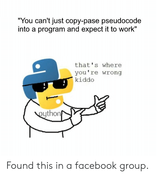 "Kiddo: ""You can't just copy-pase pseudocode  into a program and expect it to work""  that's where  you're wrong  kiddo  eython Found this in a facebook group."