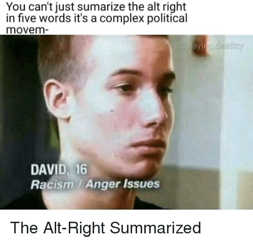 alt-right: You can't just sumarize the alt right  in five words it's a complex political  movem  DAVID, 16  Racism / Anger Issues The Alt-Right Summarized