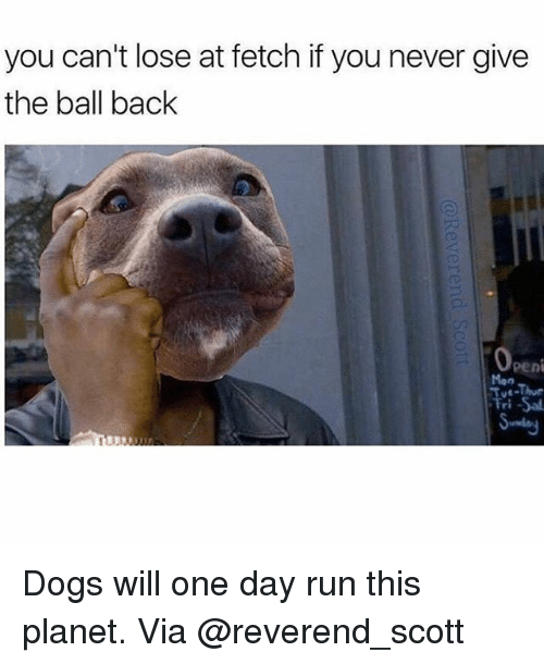 Penies: you can't lose at fetch if you never give  the ball back  Peni Dogs will one day run this planet. Via @reverend_scott