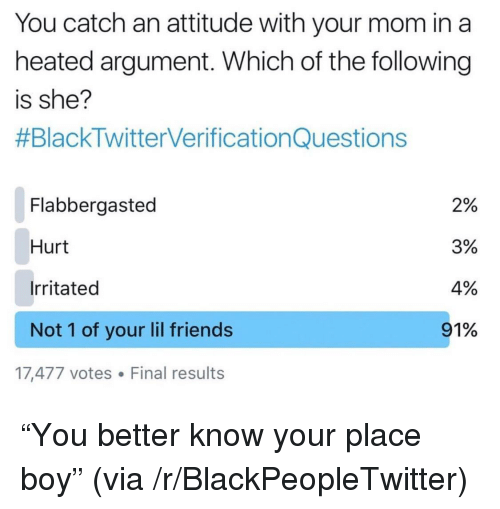 "Blackpeopletwitter, Friends, and The Following: You catch an attitude with your mom in a  heated argument. Which of the following  is she?  #BlackTwitterverificationQuestions  Flabbergasted  Hurt  Irritated  Not 1 of your lil friends  2%  3%  4%  91%  17,477 votes Final results <p>""You better know your place boy"" (via /r/BlackPeopleTwitter)</p>"