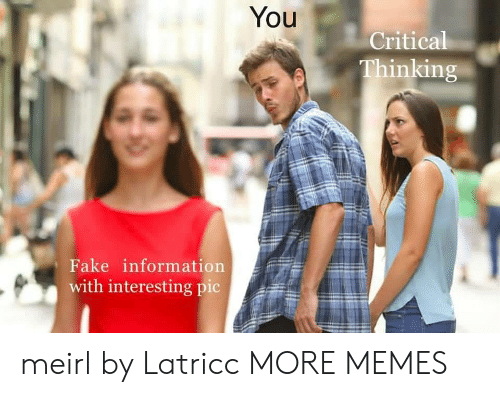 Critical Thinking: You  Critical  Thinking  Fake information  with interesting pic meirl by Latricc MORE MEMES