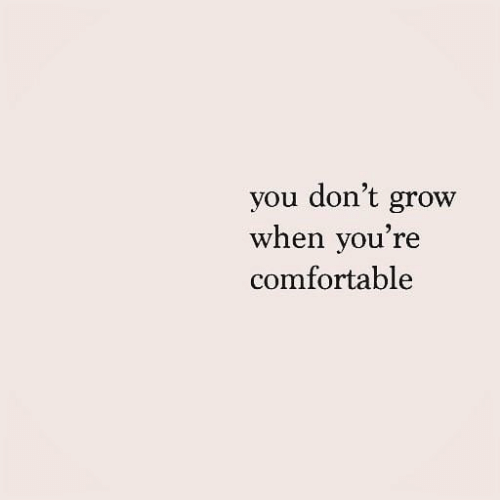 comfortable: you don't grow  when you're  comfortable