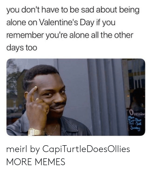 Alone On Valentines Day: you don't have to be sad about being  alone on Valentine's Day if you  remember you're alone all the other  days too  penin  Fri -Sa meirl by CapiTurtleDoesOllies MORE MEMES