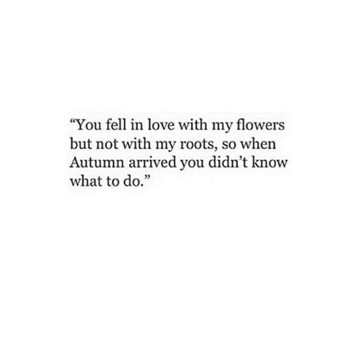 """Love, Flowers, and Roots: """"You fell in love with my flowers  but not with my roots, so when  Autumn arrived you didn't know  what to do.""""  35"""