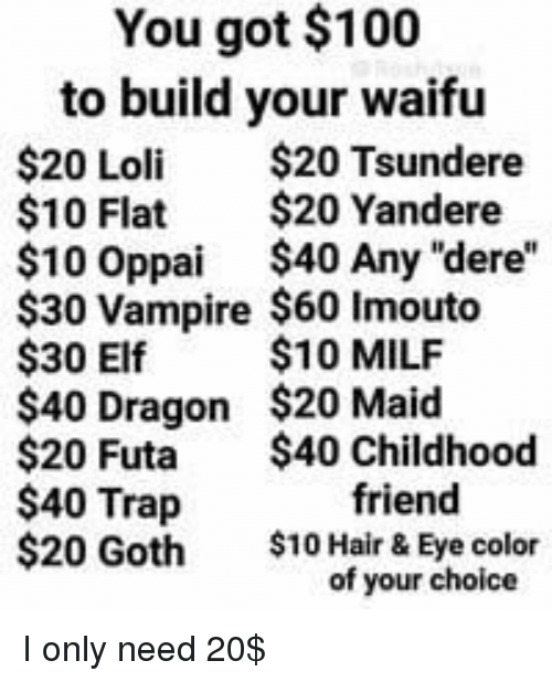 You Got $100 to Build Your Waifu $20 Loli $20 Tsundere $10