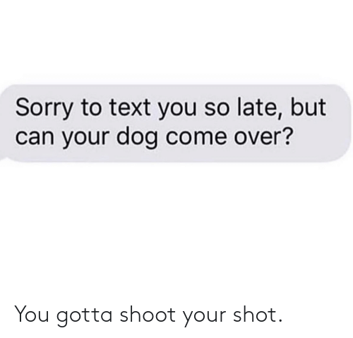 shot: You gotta shoot your shot.
