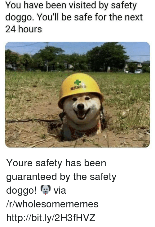 Http, Been, and Doggo: You have been visited by safety  doggo. You'll be safe for the next  24 hours Youre safety has been guaranteed by the safety doggo! 🐶 via /r/wholesomememes http://bit.ly/2H3fHVZ