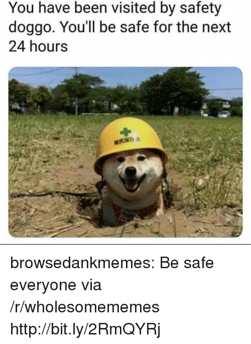 Tumblr, Blog, and Http: You have been visited by safety  doggo, You'll be safe for the next  24 hours browsedankmemes:  Be safe everyone via /r/wholesomememes http://bit.ly/2RmQYRj