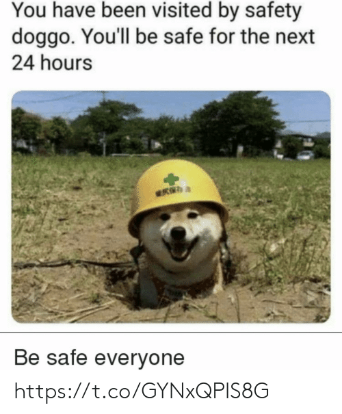 You Have Been Visited By: You have been visited by safety  doggo. You'll be safe for the next  24 hours  Be safe everyone https://t.co/GYNxQPIS8G
