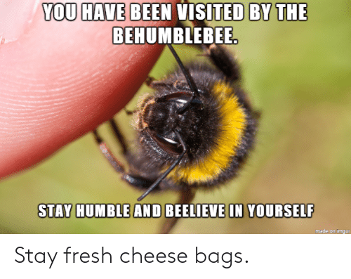 You Have Been Visited By: YOU HAVE BEEN VISITED BY THE  BEHUMBLEBEE  STAY HUMBLE AND BEELIEVE IN YOURSELF  made on imqur Stay fresh cheese bags.