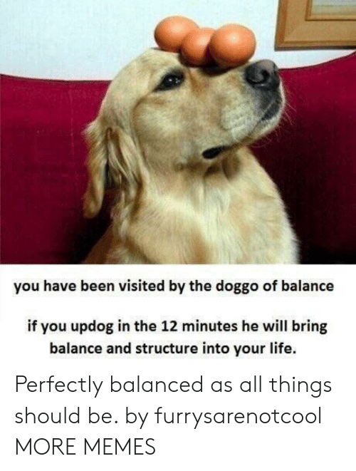 You Have Been Visited By: you have been visited by the doggo of balance  if you updog in the 12 minutes he will bring  balance and structure into your life. Perfectly balanced as all things should be. by furrysarenotcool MORE MEMES