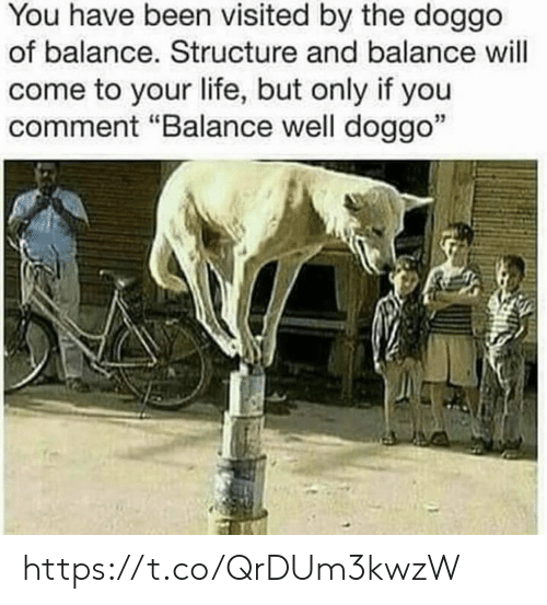 "You Have Been Visited By: You have been visited by the doggo  of balance. Structure and balance will  come to your life, but only if you  comment ""Balance well doggo""  35 https://t.co/QrDUm3kwzW"