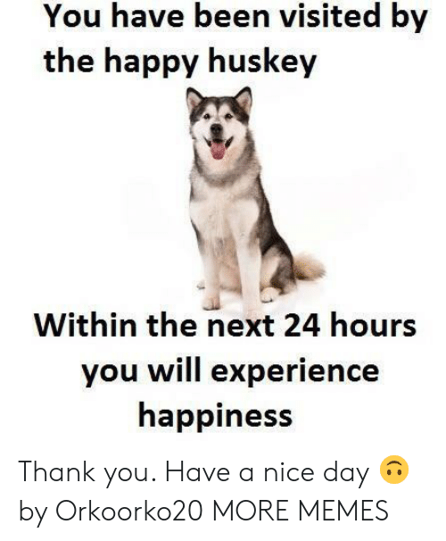 You Have Been Visited By: You have been visited by  the happy huskey  Within the next 24 hours  you will experience  happiness Thank you. Have a nice day 🙃 by Orkoorko20 MORE MEMES