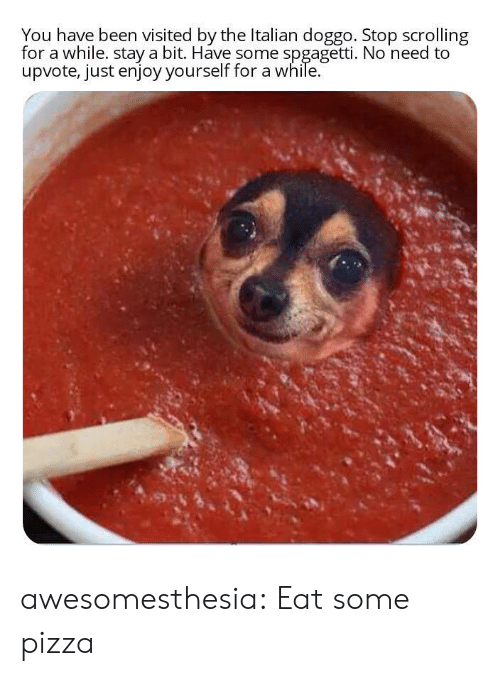 You Have Been Visited By: You have been visited by the Italian doggo. Stop scrolling  for a while. stay a bit. Have some spgagetti. No need to  upvote, just enjoy yourself for a while. awesomesthesia:  Eat some pizza