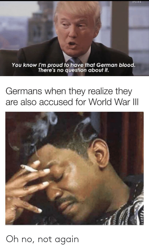 realize: You know I'm proud to have that German blood.  There's no question about it.  Germans when they realize they  are also accused for World War III  1714 Oh no, not again