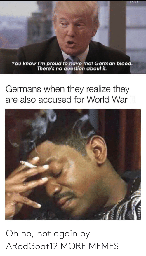realize: You know I'm proud to have that German blood.  There's no question about it.  Germans when they realize they  are also accused for World War III  1714 Oh no, not again by ARodGoat12 MORE MEMES