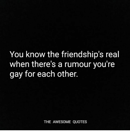 awesome quotes: You know the friendship's real  when there's a rumour you're  gay for each other.  THE AWESOME QUOTES