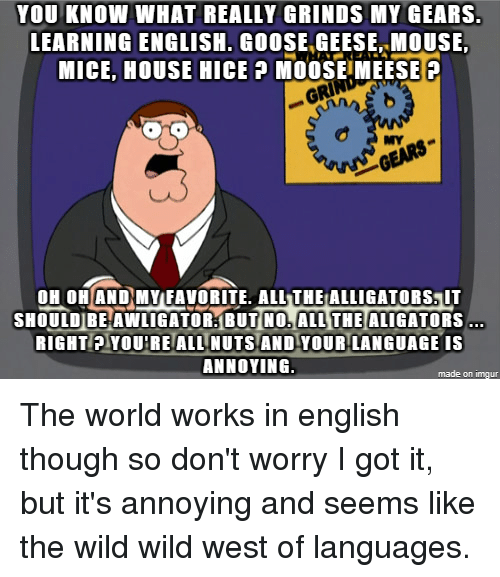 you know what really grinds my gears learning english goose geese
