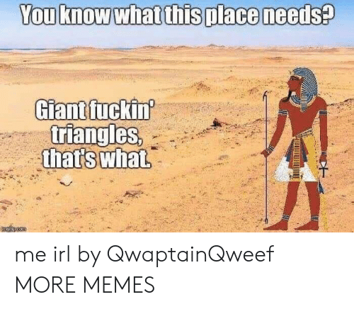 Dank, Memes, and Target: You know what this place needs?  Giant fuckin  triangles,  that's what  mglincom me irl by QwaptainQweef MORE MEMES