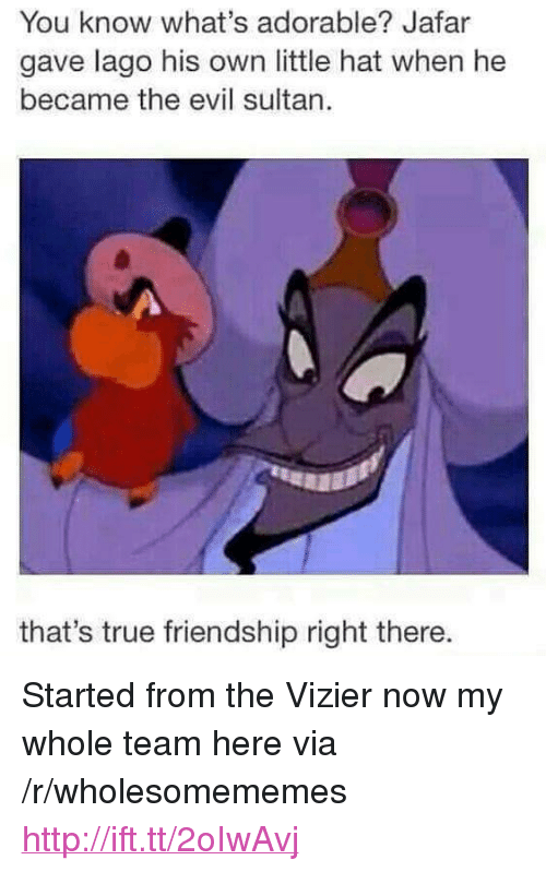"jafar: You know what's adorable? Jafar  gave lago his own little hat when he  became the evil sultan.  that's true friendship right there. <p>Started from the Vizier now my whole team here via /r/wholesomememes <a href=""http://ift.tt/2oIwAvj"">http://ift.tt/2oIwAvj</a></p>"