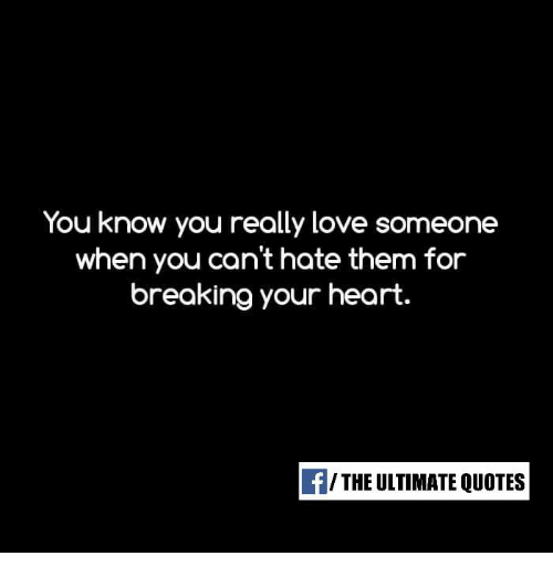 You Know You Really Love Someone When You Can\'t Hate Them ...