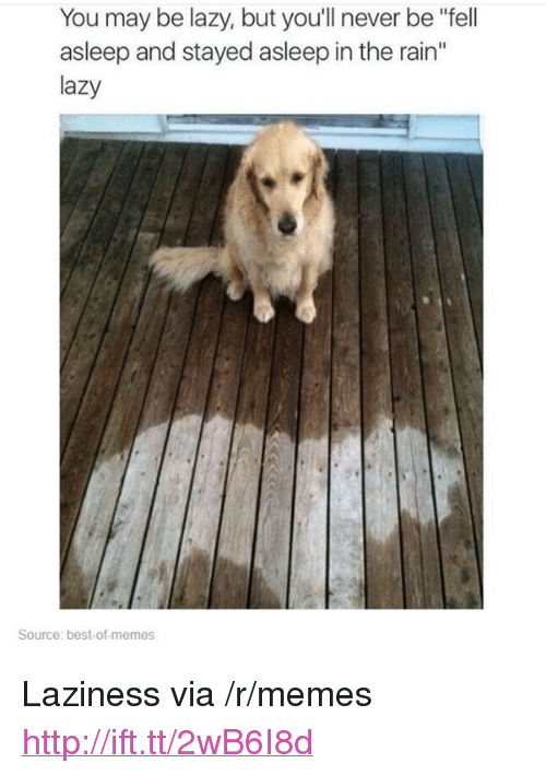 "Best Of Memes: You may be lazy, but you'll never be ""fell  asleep and stayed asleep in the rain""  lazy  Source: best-of-memes <p>Laziness via /r/memes <a href=""http://ift.tt/2wB6I8d"">http://ift.tt/2wB6I8d</a></p>"