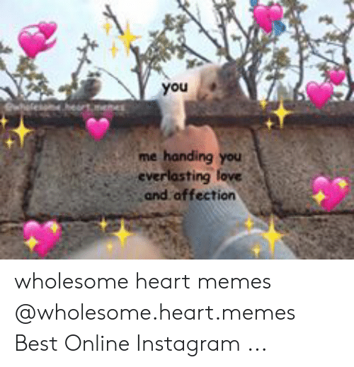 Instagram, Memes, and Best: you  me handing you  and affection wholesome heart memes @wholesome.heart.memes Best Online Instagram ...