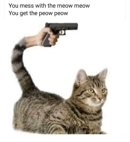 Mess With The: You mess with the meow meow  You get the peow peow