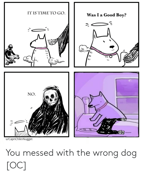 Messed: You messed with the wrong dog [OC]