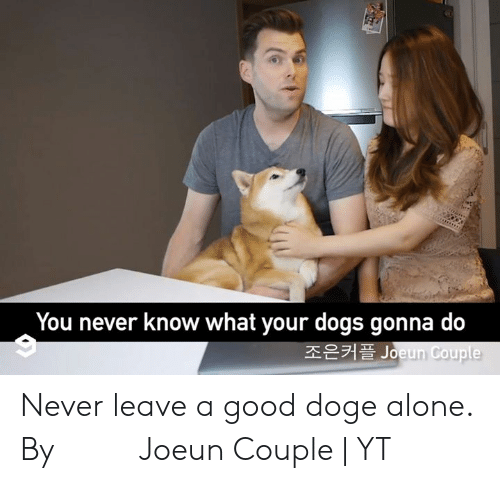 Doge: You never know what your dogs gonna do  조은커플 Joeun Couple Never leave a good doge alone.  By 조은커플 Joeun Couple | YT