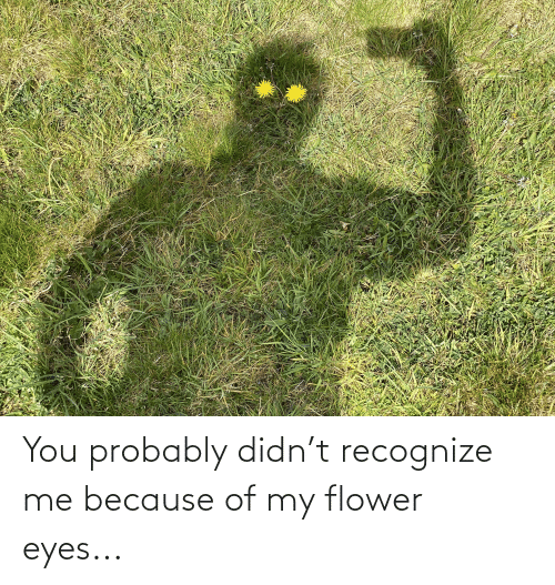 Because Of: You probably didn't recognize me because of my flower eyes...