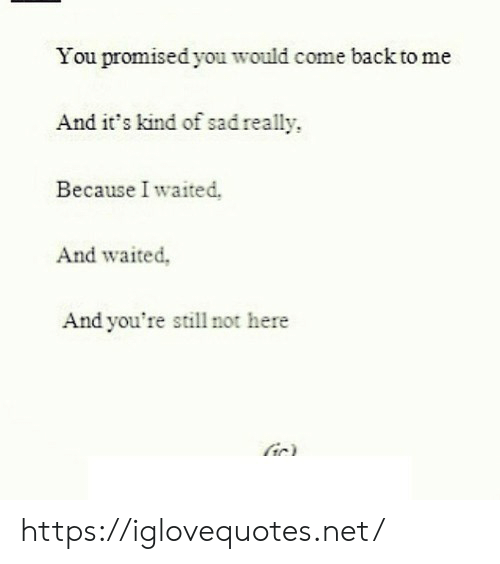 Come Back To Me: You promised you would come back to me  And it's kind of sad really  Because I waited.  And waited,  And you're still not here  ir) https://iglovequotes.net/