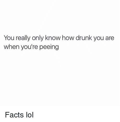 Drunk, Facts, and Funny: You really only know how drunk you are  when you're peeing Facts lol