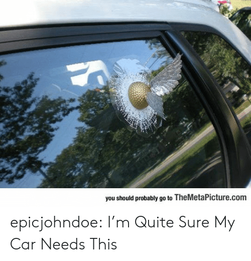 Should Probably: you should probably go to TheMetaPicture.com epicjohndoe:  I'm Quite Sure My Car Needs This