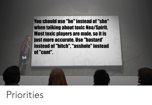 """Cunt, Spirit, and She: You should use """"he"""" instead of """"she""""  when talking about toxic Nea/Spirit.  Most toxic players are male, so it is  just more accurate. Use """"bastard'  instead of """"bitch"""", """"asshole"""" instead  of """"cunt"""". Priorities"""