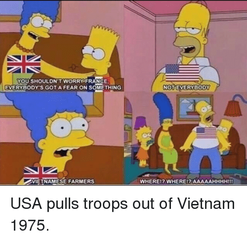 gota: YOU SHOULDN'T WORRY FRANCE  EVERYBODY'S GOTA FEAR ON SOMETHING  NOTEVERYBODY  VIETNAMESE FARMERS  WHEREI? WHERE!R AAAAAHHHHIII USA pulls troops out of Vietnam 1975.