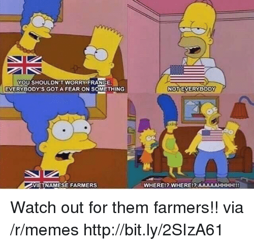 gota: YOU SHOULDN'T WORRY FRANCE  EVERYBODY'S GOTA FEAR ON SOMETHING  VIETNAMESE FARMERS  WHEREl? WHERE!? AAAAAHHHHIII Watch out for them farmers!! via /r/memes http://bit.ly/2SIzA61