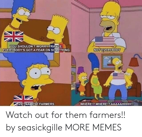 gota: YOU SHOULDN'T WORRY FRANCE  EVERYBODY'S GOTA FEAR ON SOMETHING  VIETNAMESE FARMERS  WHEREl? WHERE!? AAAAAHHHHIII Watch out for them farmers!! by seasickgille MORE MEMES