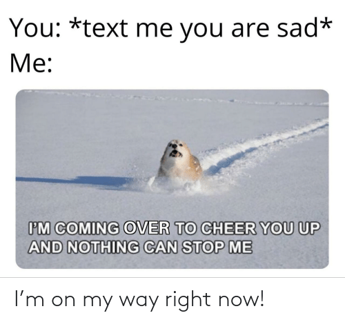 To Cheer You Up: You: *text me you are sad*  Me:  IM COMING OVER TO CHEER YOU UP  AND NOTHING CAN STOP ME I'm on my way right now!