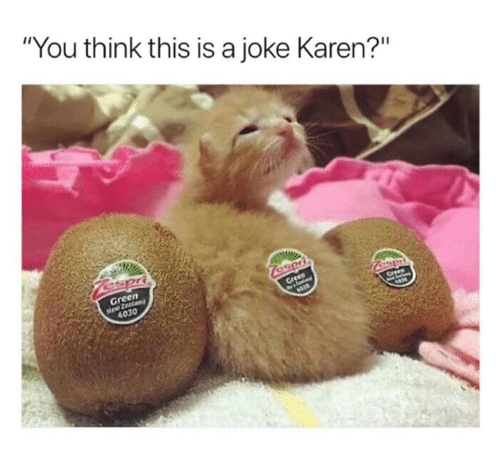 """Memes, 🤖, and Gre: """"You think this is a joke Karen?""""  en  Gre  4030"""