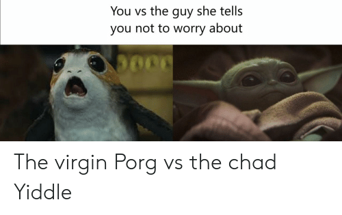Virgin: You vs the guy she tells  you not to worry about The virgin Porg vs the chad Yiddle